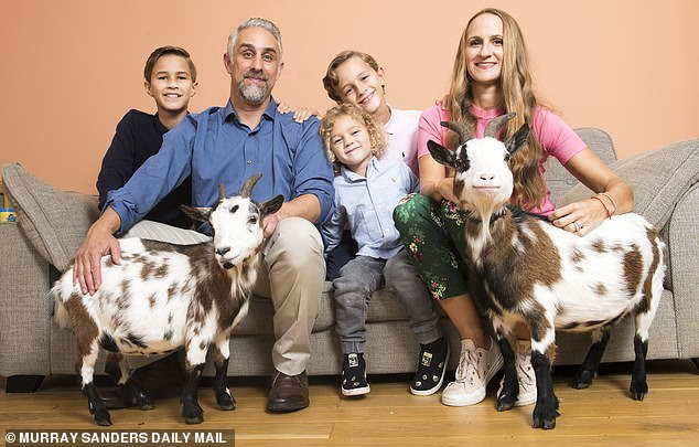 Tom Nochi, 44, lives in Essex with his wife Laura and their sons(pictured left to right) Yoav, 12, Guy, five, and Oz, nine. Their pygmy goatsMillie and Bertha after names after Laura's late grannies but are far from ladylike - with both pets being big on burping