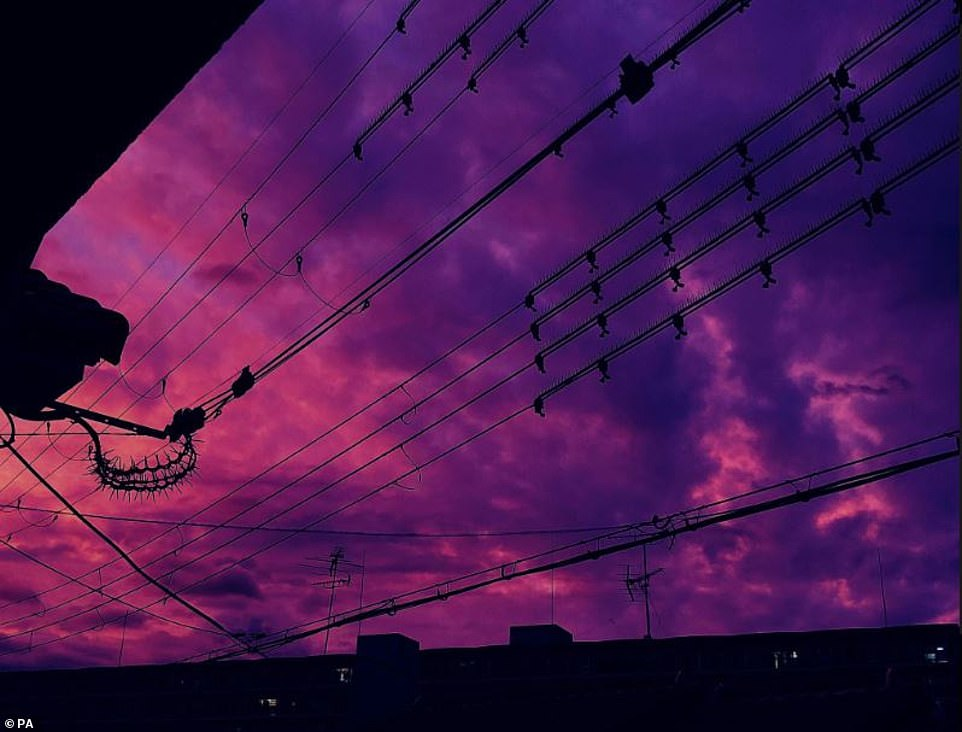 The skies above Japan turned pink and purple before typhoon Hagibi hit the country, causing mass devastation