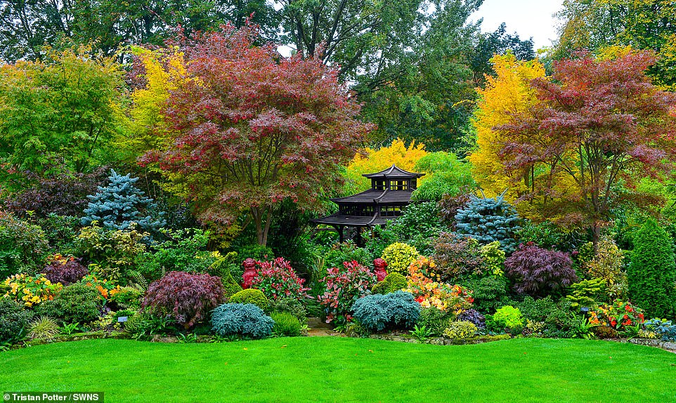 Retired Couple Marie And Tony Newton Reveal Autumn Garden In