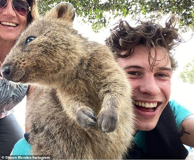 Fur friend: GF Camila Cabello was quick to add a jokey comment on her beau's quokka snaps saying, 'I love this picture of us!