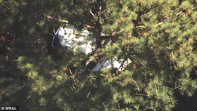 Agencies responded after the incident was reported 7.25pm Sunday and 'thepilot sounded nervous' before the aircraft was eventually discovered between trees in a North Carolina park