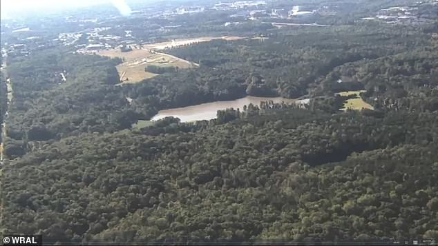 Umstead State Park is 5,200 acres of dense forest with few roads and little to no light