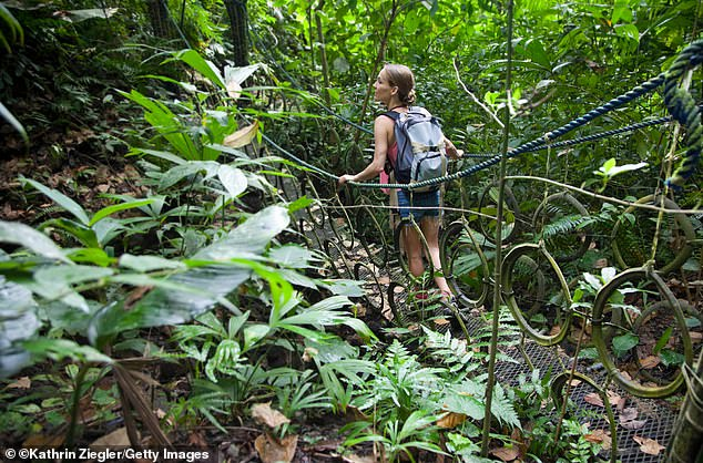 A female hiker crossing a hanging bridge in dense jungle near Quepos, Puntarenas province, in Costa Rica, which is sixth in the countries ranking