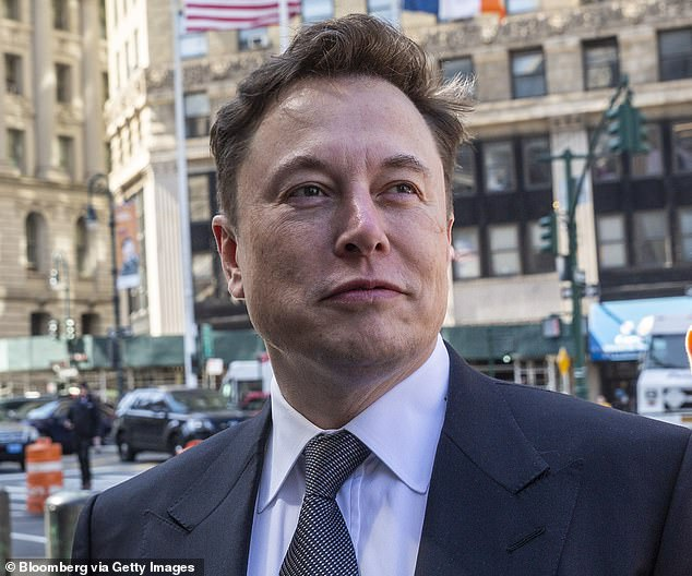 Tesla, co-founded by billionaire Elon Musk (pictured), intends to use the 500,000-vehicle-capacity plant in Shanghai to produce base versions of Model 3 and later also the Model Y
