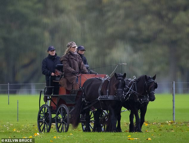 The Countess of Wessex appears to be enjoying some downtime following her visit to Nairobi on 19 September. Pictured, driving a horse and carriage through the grounds