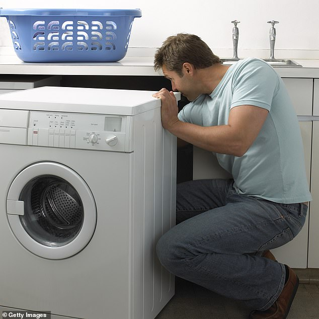 Kelli said Leo should anticipate household chaos throughout Retrograde, with broken appliances and domestic disagreements looming on the horizon (stock image)