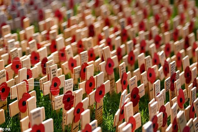 Honour: The poppy is worn by both public figures and members of the UK public, and serves as a prestigious symbol to commemorate military personnel who died in war (file photo)