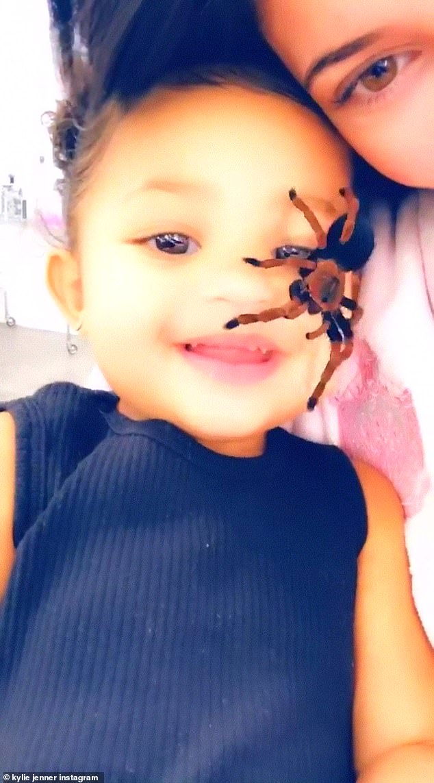 'You're not scared?' Kylie Jenner uses controversial spider filter on Stormi... but smiling toddler insists she likes it crawling on her face in new Instagram Stories video