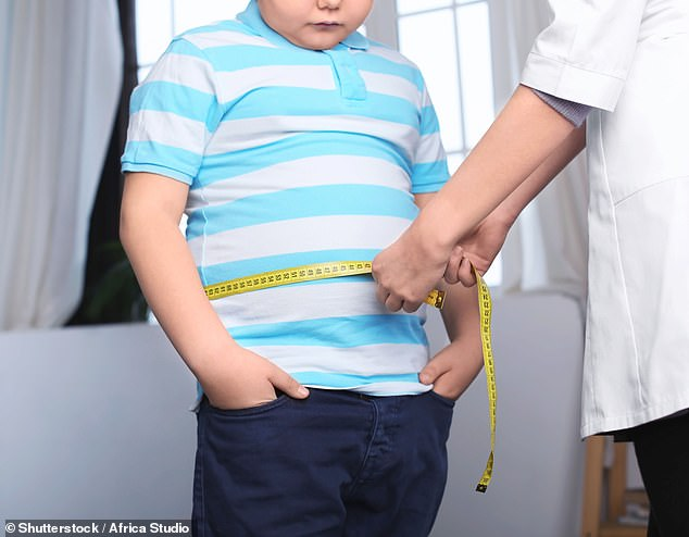 Youngsters who have a brother or sister are up to seven times less likely to be severely overweight by the age of seven, research suggests (file)