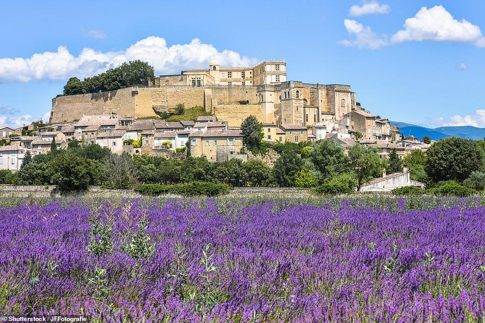 Grignan, pictured, in theRhône-Alpes region, is a 2019 winner of the Les Plus Beaux Villages de France award