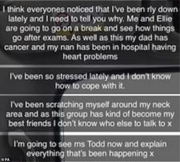 Snapchat messages Griffiths sent to a group after he killed Ellie, which were released today by Wiltshire Police