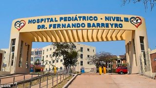 A ten-year-old girl was taken to the Hospital  Doctor Fernando Barreyro in Posadas, Argentina (pictured), with back and abdominal pains, only to find out she was pregnant