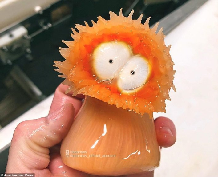 Sea anemone: This creature is a striking shade of orange and its bulging white eyes give it the look of a cartoon character.Although they resemble flowers, sea anemones are predatory animals