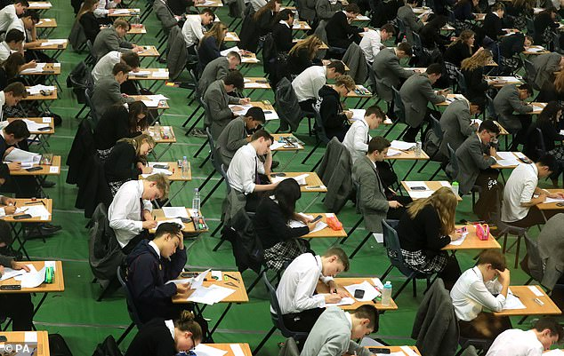 Brain boost: Researchers found that teenagers who stuck with maths in their A-levels had higher levels of a brain chemical important for memory, learning and problem-solving (stock)