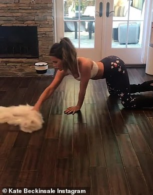 The English actress shared an Instagram video in November showing her using her cat Willow to polish a wooden floor