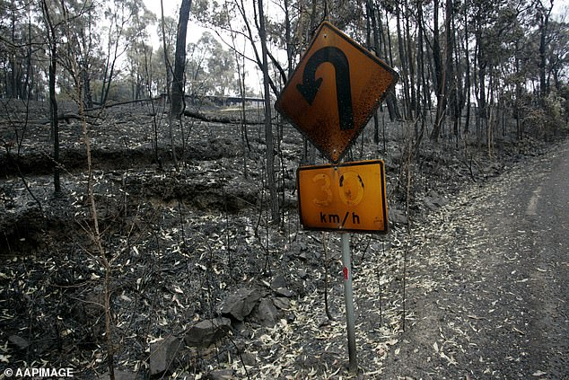 Crisis: Black Saturday burned down 450,000 hectares of land and destroyed 3,500 structures.  In the photo, the consequences of Black Saturday in 2009
