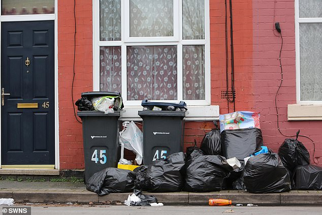 One man who lives in Balsall Heath claims he had already seen rats chewing waste from split bin bags
