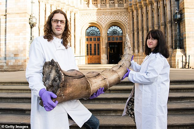 Roberto Portela Miguez and Efstratia Verveniotou holding an Erumpent horn. The exhibition is designed to 'show how closely real world animals, mythological creatures and wizarding world beasts are intertwined'