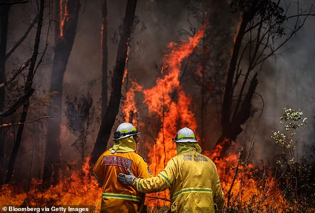 A Rural Fire Service volunteer receives instructions from a colleague while putting out a fire near Kulnura, New South Wales