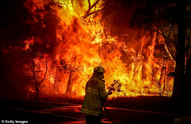 A NSW firefighter holds a hose as they prepares to extinguish a wall of flames burning near the town of Bilpin on December 19
