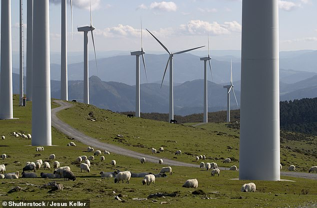 Last year the government paid over £ 136 million to energy companies to shut down their green turbines