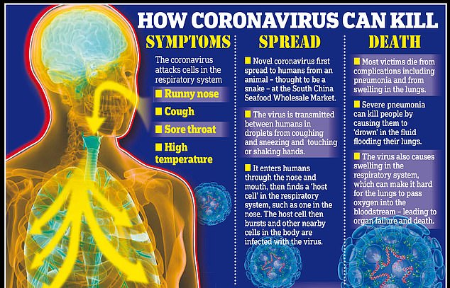 Coronavirus: What are main symptoms and dangers of COVID-19 ...