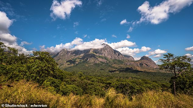 Malawi is perhaps the most varied country in Africa. Pictured is the country's Mount Mulanje