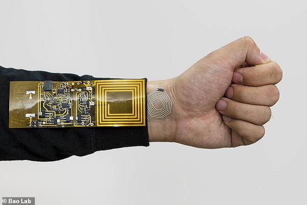 The battery is being developed with another Stanford research project in mind called BodyNet (pictured above), network of wearable sensors mean to adhere to a person's skin and collect a wide range of biometric data