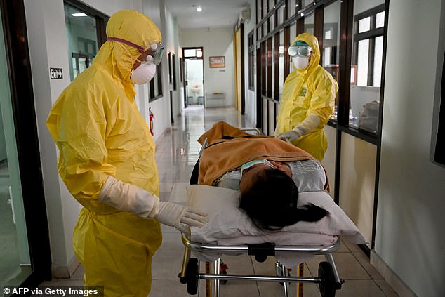 Despite no confirmed cases, Indonesia has steps in place to monitor and watch for signs of the virus. Pictured are health workers taking part in a simulation exercise inDenpasar