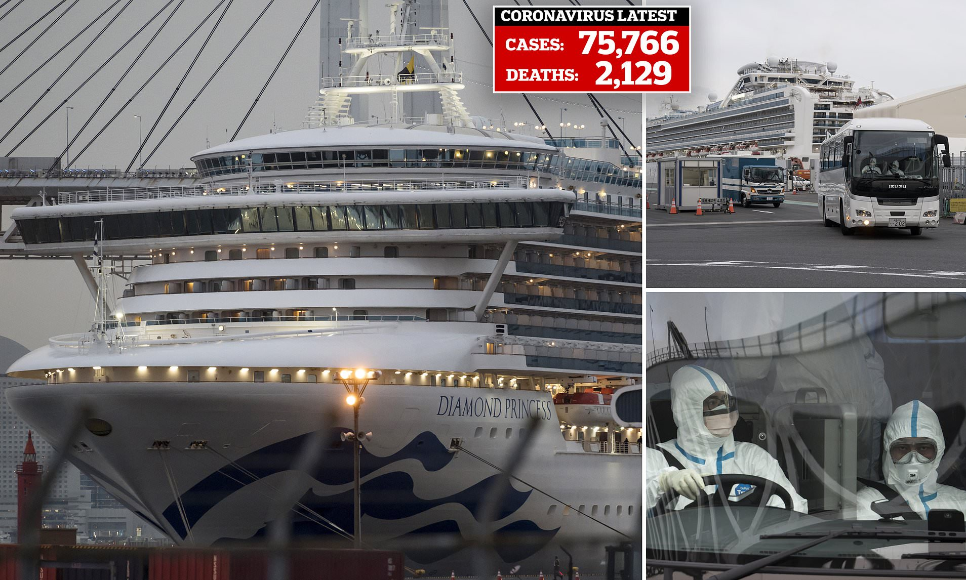Coronavirus cruise ship Diamond Princess will be back in service ...
