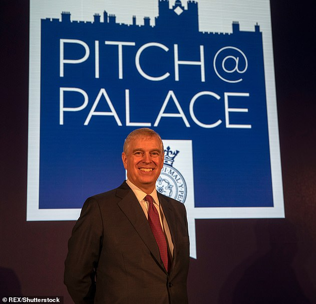 The future of Prince Andrew's pet projectPitch@Palace appears in jeopardy as yet major supporters pulled the plug and their financial support