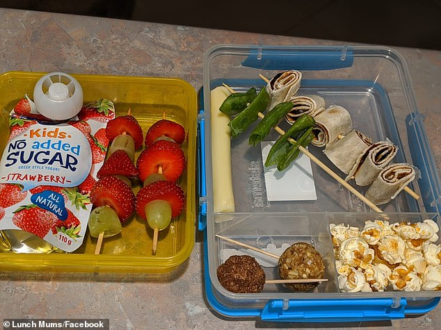 The unnamed Australian mother kicked off a discussion when she shared a photo of her son's lunch box to Facebook group Lunchbox Mums , showing strawberries, wraps and veggies all presented on individual kebab sticks. She explained it solved his fussy eating
