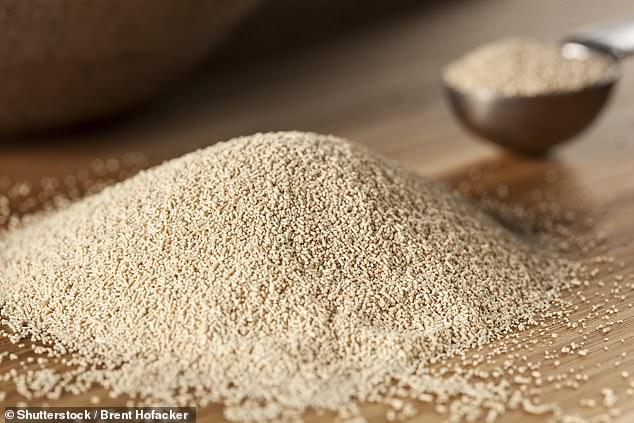 The researchers say the yeast produced using their new old bread medium could be used by the same bakeries that produced the bread being thrown away in the first place to create new bread products - rather than buying yeast from other companies
