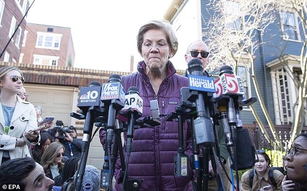 Senator Elizabeth Warren has been mentioned as a possible Treasury secretary