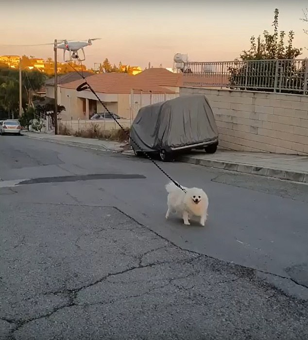 Instagram user Vakis Demetriou shared a video of him using a drone to walk his dog Oliver during a countrywide COVID-19 shutdown in Cyprus