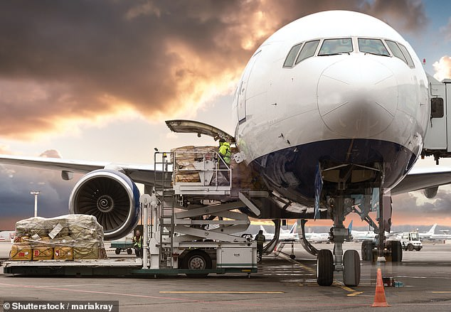 There has been a 229 percent year-on-year increase in global flight bookings made in the past 14 days in the UK for January 2021