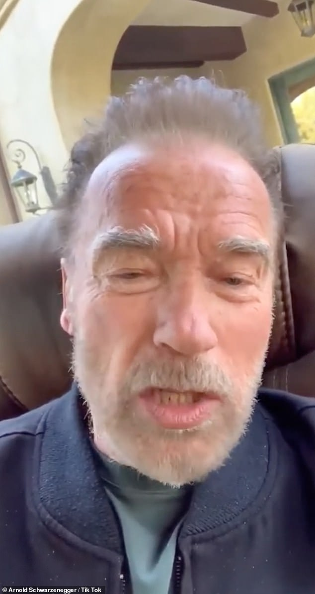 Statement:Schwarzenegger was on board early, issuing a statement for the GoFundMe Page that began, 'Our doctors, nurses and hospital staff are the real action heroes of this crisis. I just play one in the movies'