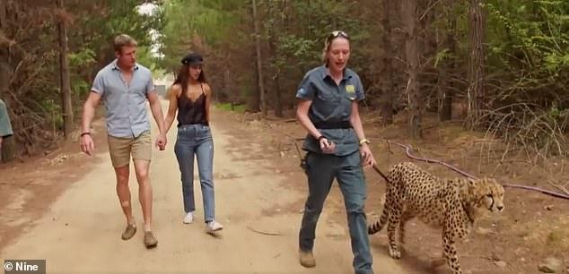 Speed of light:'I'm talking kilometres, not kilobytes, you robo flop!' replied the Zookeeper