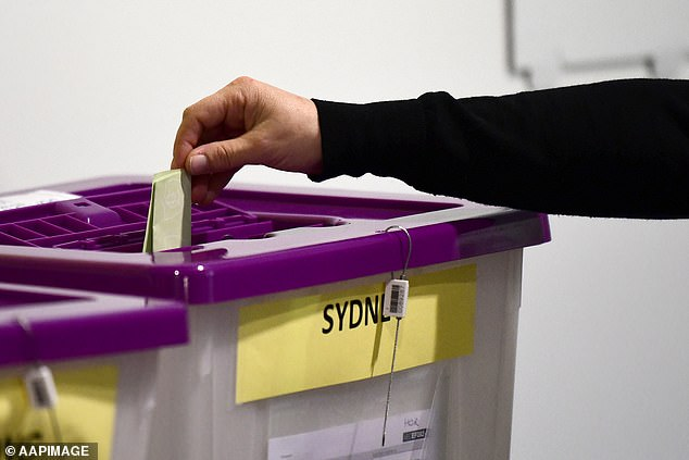 Local council elections will be postponed in NSW as a result of the coronavirus pandemic (file picture)