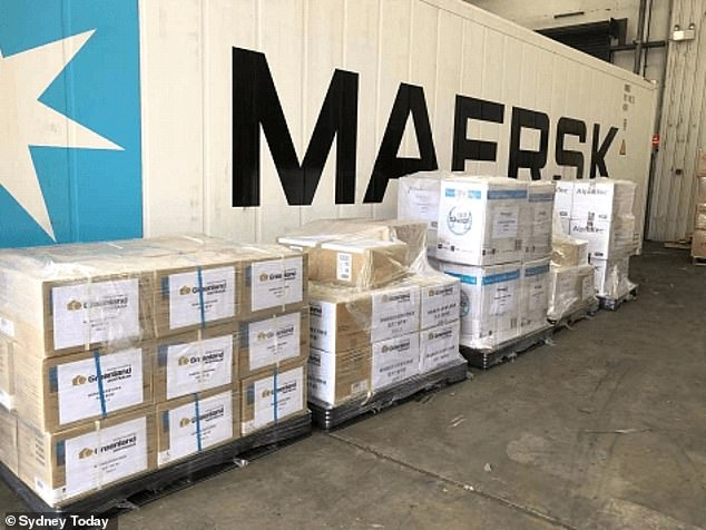 Greenland sent HR and management staff out to buy the medical supplies before hoarding them at its Sydney headquarters