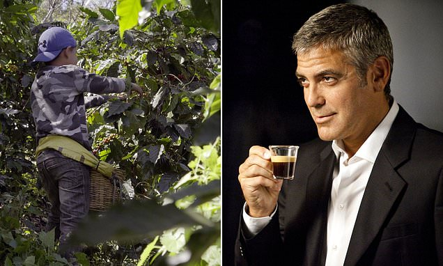 George Clooney's Nespresso admits buying beans from child labour farms