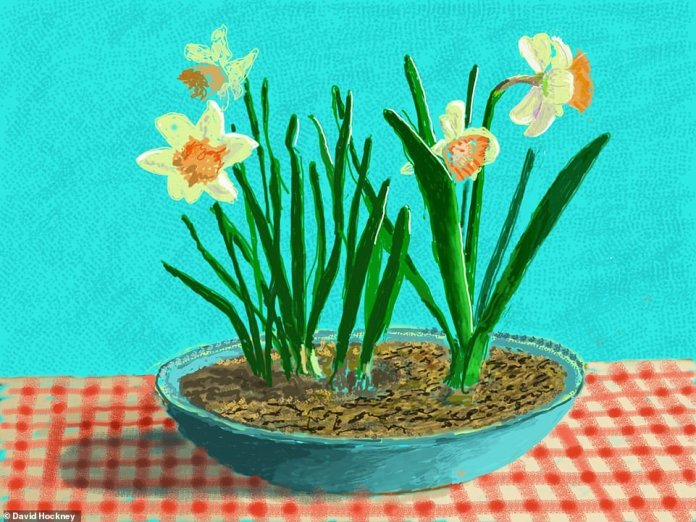 A flower pot sat indoors against an aqua backdrop and on top of a criss-cross patterned tablecloth. The artist's home is the perfect setting to draw and paint the arrival of spring - an activity he did around a decade ago in East Yorkshire