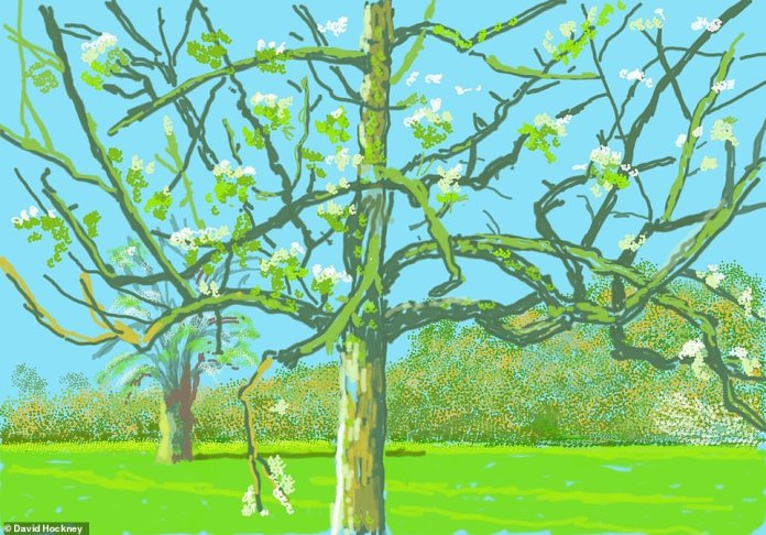 A closer-up view of a winter tree in blossom, with another seen further in the background.Hockney said: 'We have lost touch with nature rather foolishly as we are a part of it, not outside it'