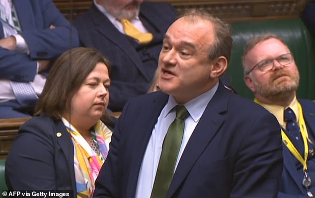 Sir Ed Davey, pictured in the House of Commons in December 2019, said decision-makers need to 'get things cracking and get an online virtual parliament to serve the nation'