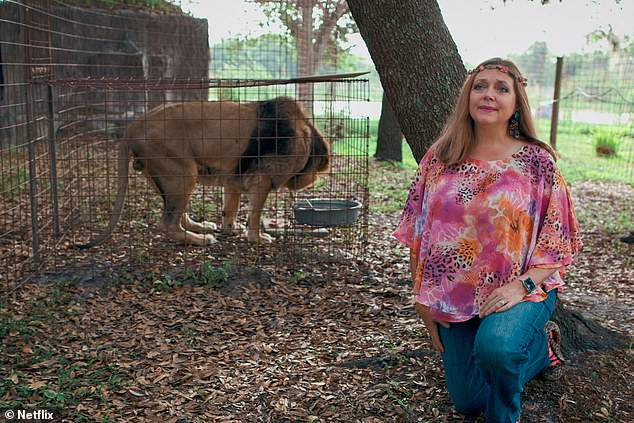 Carole Baskin (pictured) was depicted at the arch nemesis of Joe Exotic, an animal rights campaigner and CEO of Big Cats Rescue based in Tampa, Florida