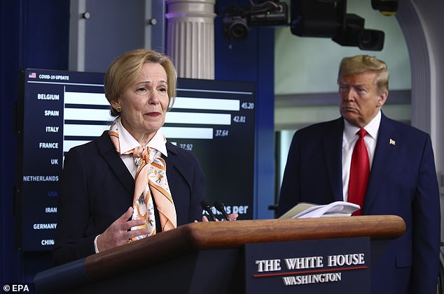 Birx immediately chimed in to back up Trump's skepticism, saying: 'I put China on there so basically you can see how unrealistic this would be.'