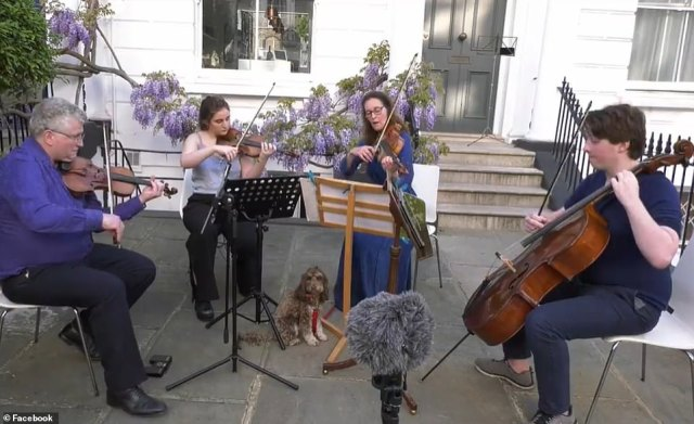 Violinist Rafael Todes (left), 53, his wife Helena Newman (third from left), and children Isabella (second from left) and Max (right), from west London, who have been playing their music for their neighbours for six weeks now, had been performing Shostakovich's String Quartet No4