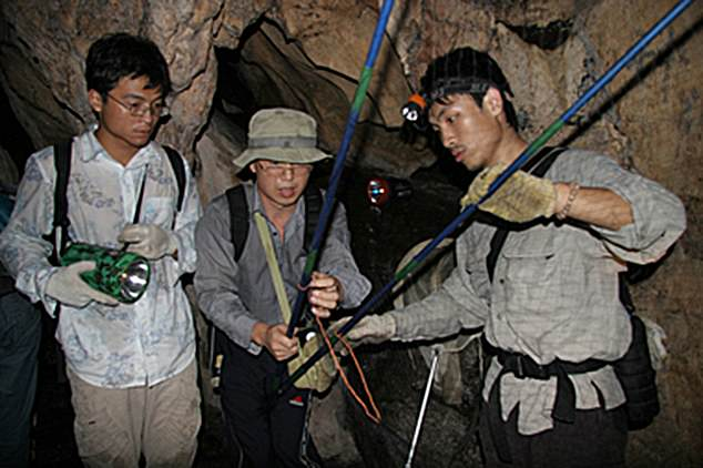 The emerging viruses group pictured catching bats in a cave
