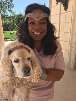 Oprah Says she Has Canceled All Plans Through the End of 2020 – and Says her Dog Sadie is Currently Quarantined in her Guesthouse Over Fears the Spaniel May Have Coronavirus