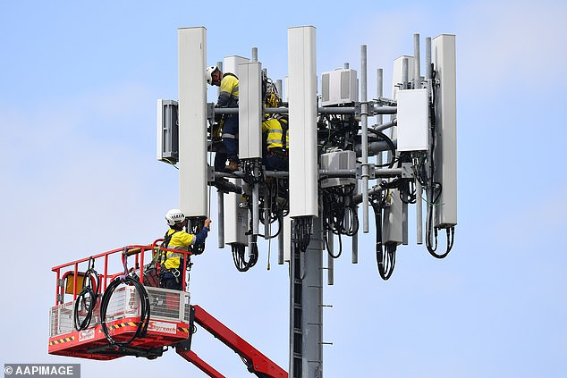 5G technology has been rolled out to 47 cities and towns across Australia so far. Pictured are telecommunications workers upgrading a mobile cell tower in Sydney